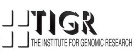 The Institute for Genomic Research