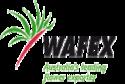 WAFEX Logo