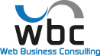 Web Business Consulting