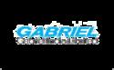 Gabriel India Ltd Logo