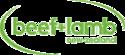 B+LNZ Logo